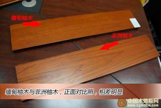 """虎王地板缅甸柚木实木漆板测评:实木地板中的""""花魁"""""""