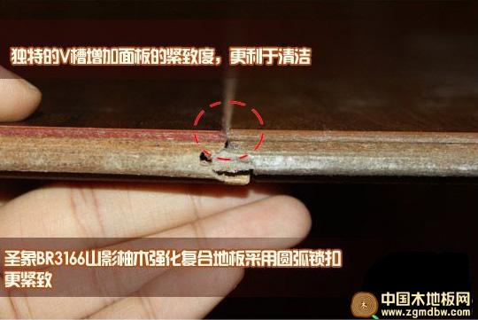 测评:圣象山影柚木强化复合地板