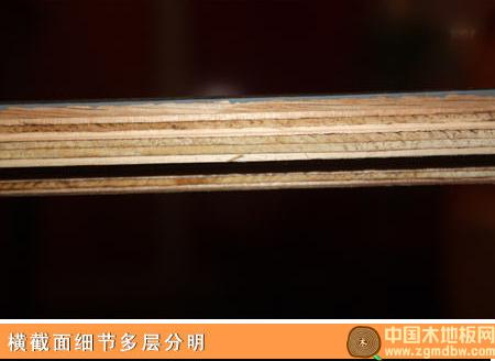 安信唯美系列栎木实木复合地板评测:大尺寸大气度