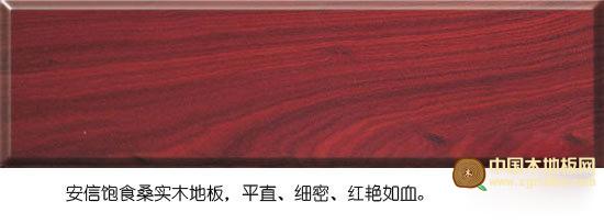 安信饱食桑实木地板