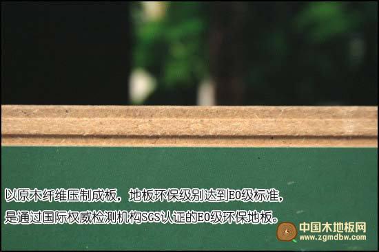 圣象强化地板PK8173