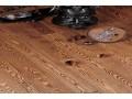 澳品地板—实木仿古白腊木-FL-015