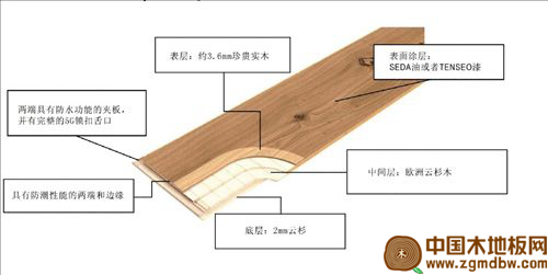 steirer三层实木地板结构图