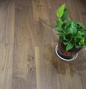 皇嘉·卢森黑胡桃多层实木地板测评