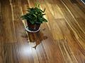 皇嘉•卢森相思木多层实木地板测评 结果出人意料