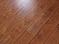 燕泥强化地板—金玉满堂