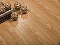 燕泥强化地板—大师映象
